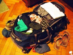 Tara's pack