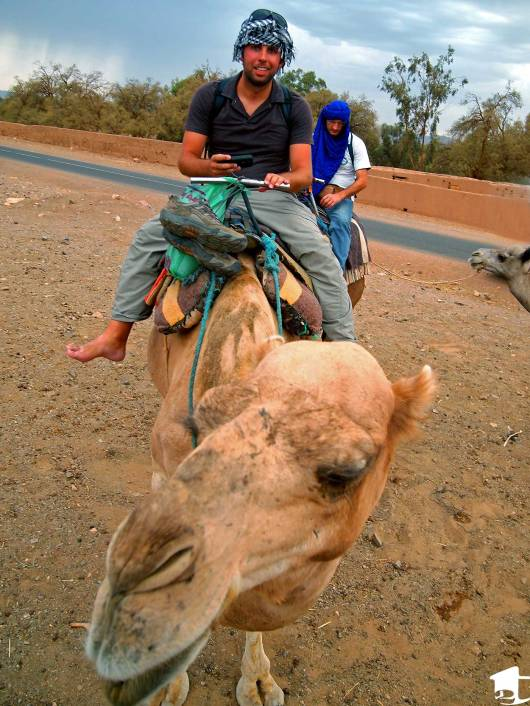 Riding a camel into the Sahara