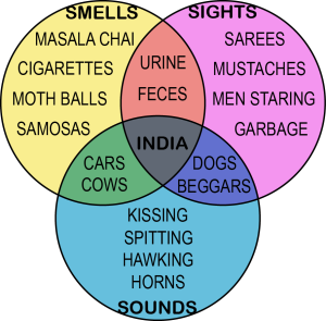 Venn Diagram of India