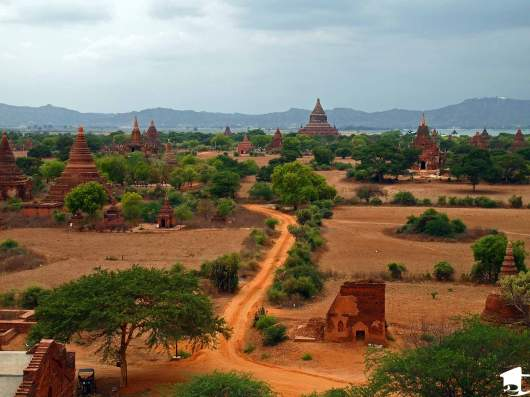 View of the Temples of Bagan