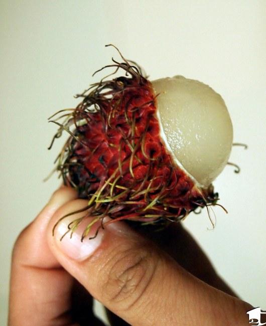 Rambutan in Thailand